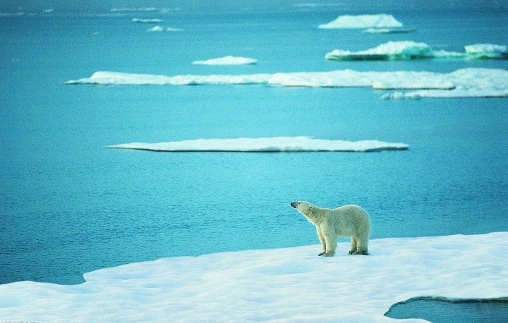 China mulls nuclear power for polar ships