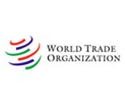 China major driver of global merchandise trade but needs to rebalance growth:WTO members