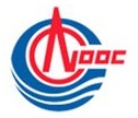China's CNOOC in talks to buy 1 million mt/year of LPG from 2015 for 5-10 years