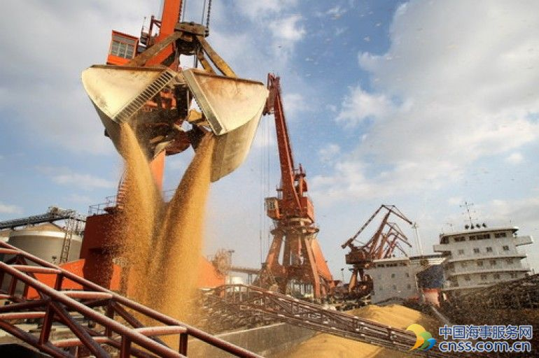 China Shipping starts grain shipping service with COFCO