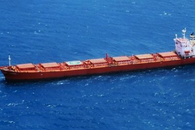Cosco puts two post-panamax bulkers into Baumarine pool