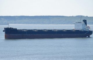Arrested Bulker Maverick Guardian Auctioned Off